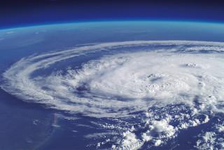台風のバーカ写真